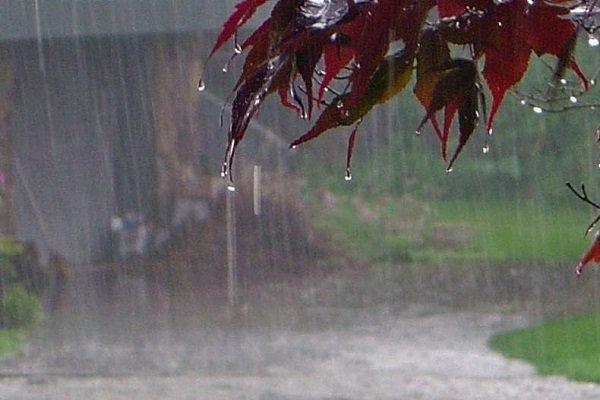 اطلاعیه سازمان هواشناسی کشور آسمان پایتخت نیمهابری میشود/ ورود سامانه بارشی فعال در کشور